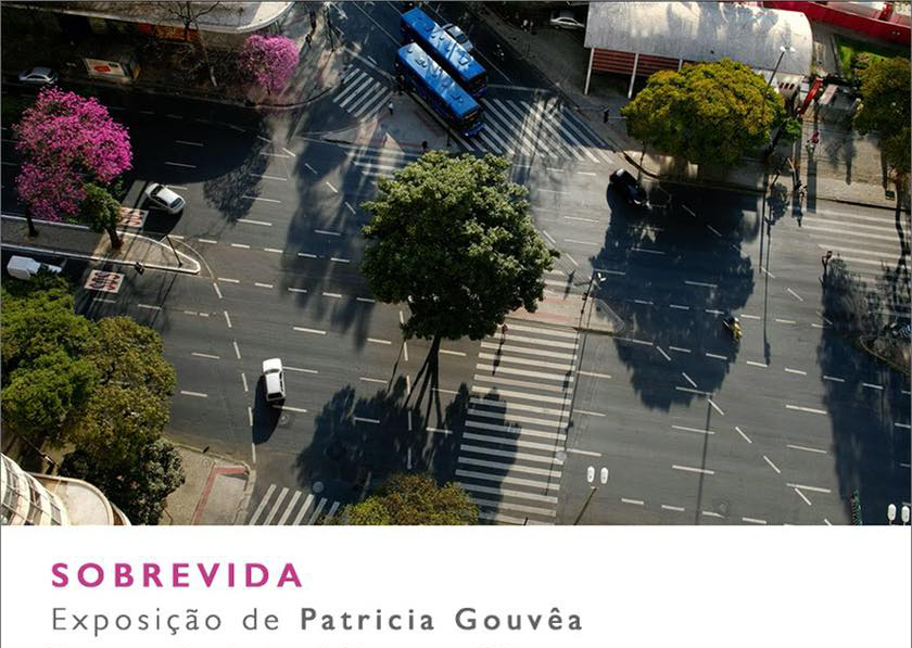 "Patricia Gouvêa apresenta ""Sobrevida"" na Galeria Mercedes Viegas."